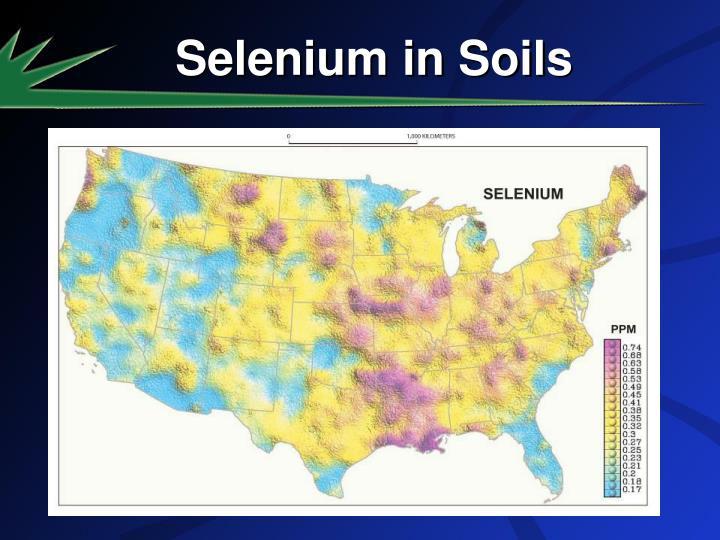 Selenium in Soils