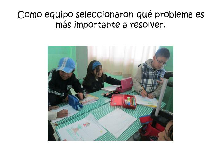 Como equipo seleccionaron qu problema es ms importante a resolver.