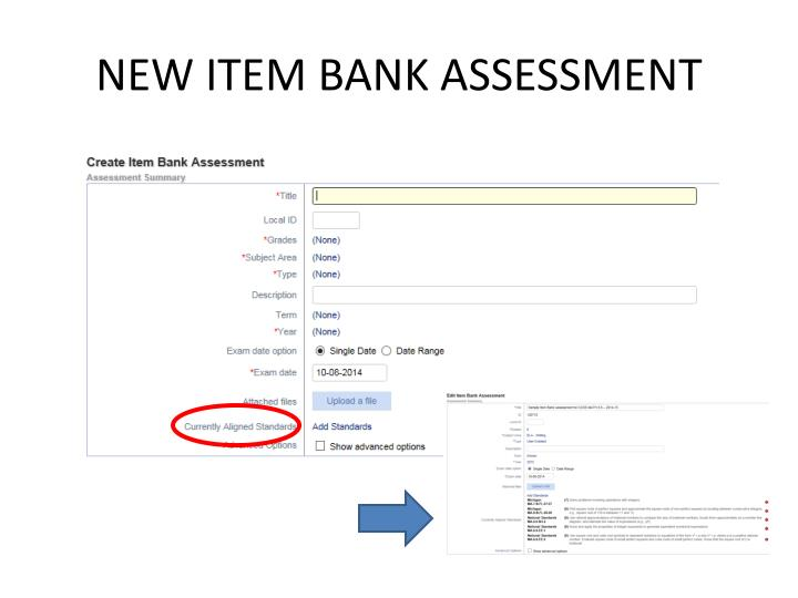 NEW ITEM BANK ASSESSMENT