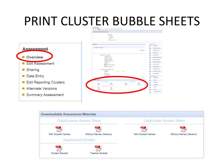 PRINT CLUSTER BUBBLE SHEETS