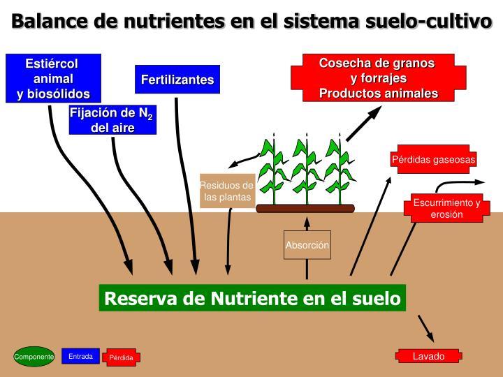 Balance de nutrientes en el sistema suelo-cultivo