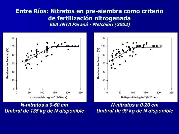 Entre Ríos: Nitratos en pre-siembra como criterio de fertilización nitrogenada