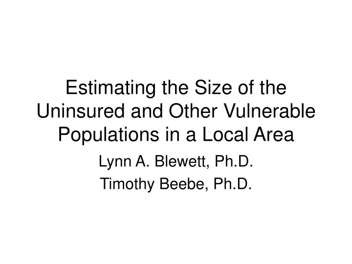 Estimating the size of the uninsured and other vulnerable populations in a local area