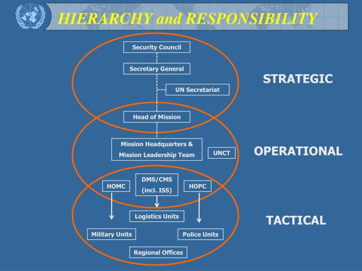 HIERARCHY and RESPONSIBILITY