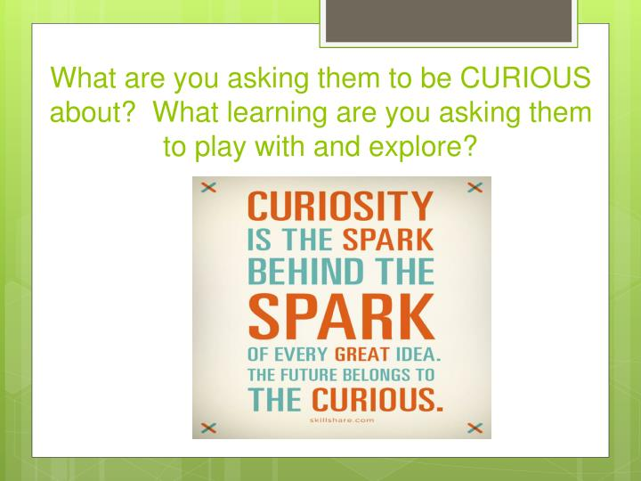 What are you asking them to be CURIOUS about?  What learning are you asking them to play with and explore?