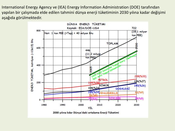 International Energy Agency ve (IEA) Energy Information Administration (DOE) tarafndan yaplan bir almada elde edilen tahmini dnya enerji tketiminin 2030 ylna kadar deiimi aada grlmektedir.