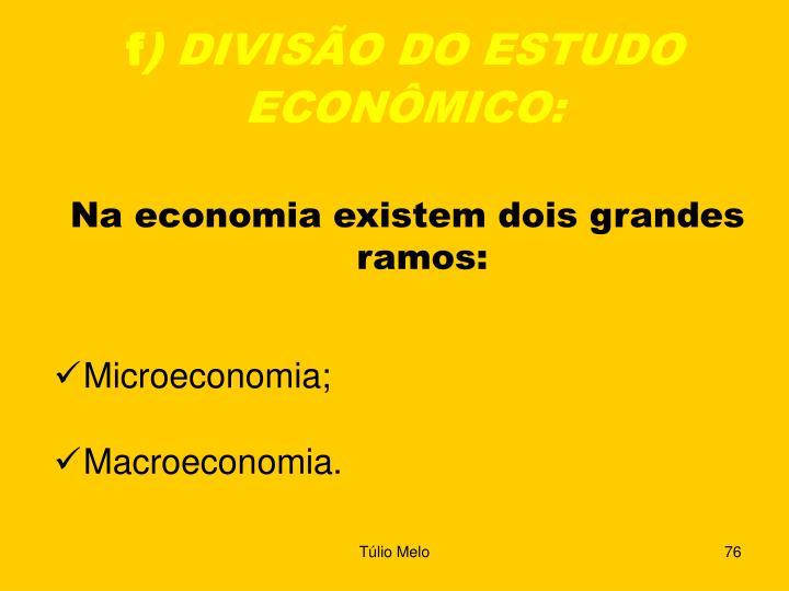 Na economia existem dois grandes ramos:
