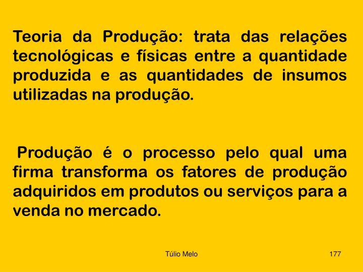 Teoria da Produção: trata das relações tecnológicas e físicas entre a quantidade produzida e as quantidades de insumos utilizadas na produção.