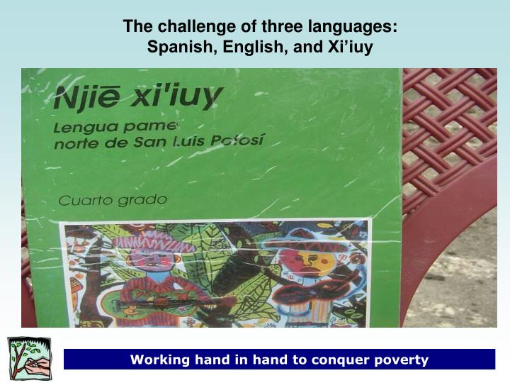 The challenge of three languages: