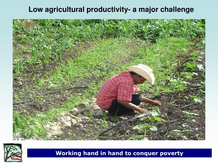 Low agricultural productivity- a major challenge