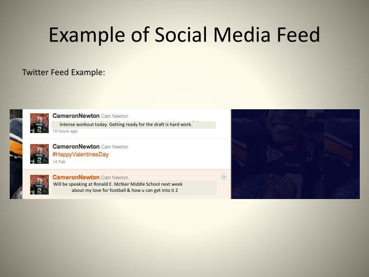 Example of Social Media Feed