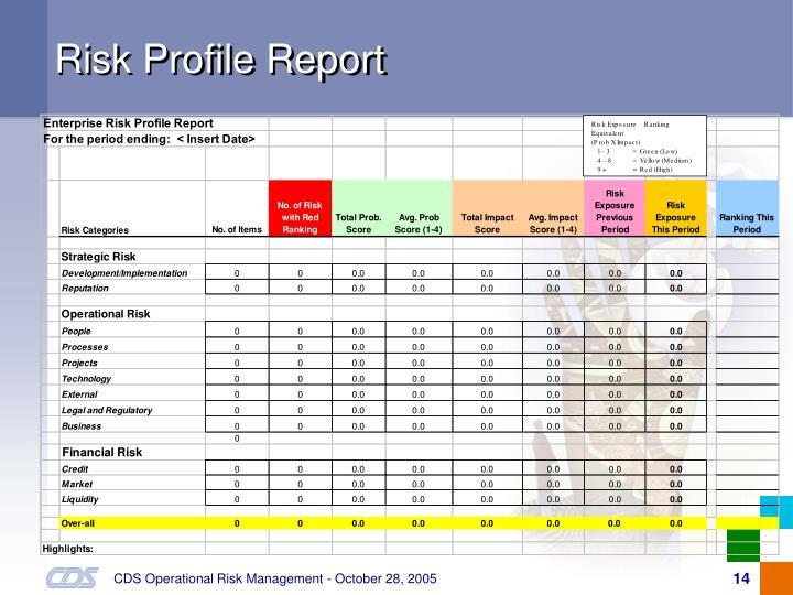 Risk Profile Report
