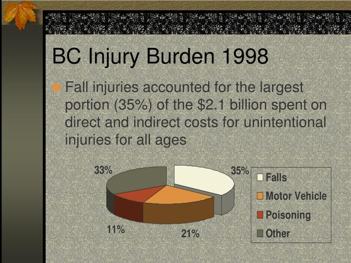 BC Injury Burden 1998