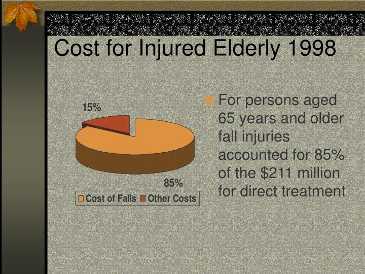 Cost for Injured Elderly 1998