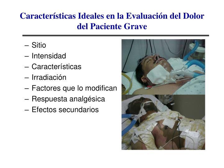 Características Ideales en la Evaluación del Dolor del Paciente Grave