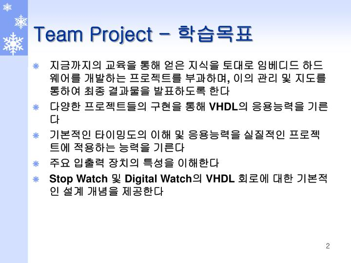 Team Project -