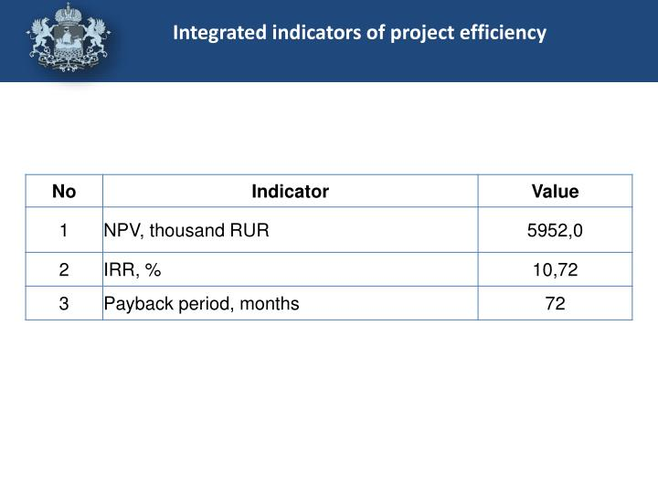 Integrated indicators of project efficiency