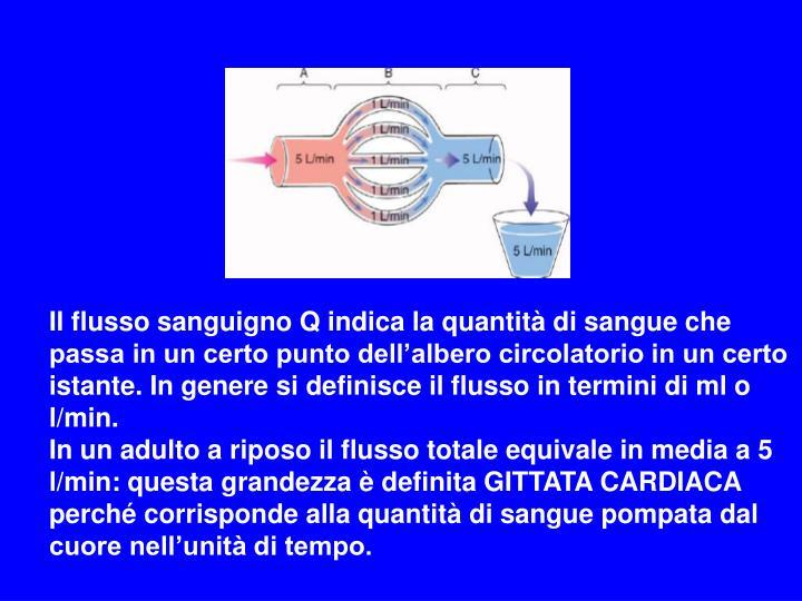 Il flusso sanguigno Q indica la quantità di sangue che passa in un certo punto dell'albero circolatorio in un certo istante. In genere si definisce il flusso in termini di ml o l/min.