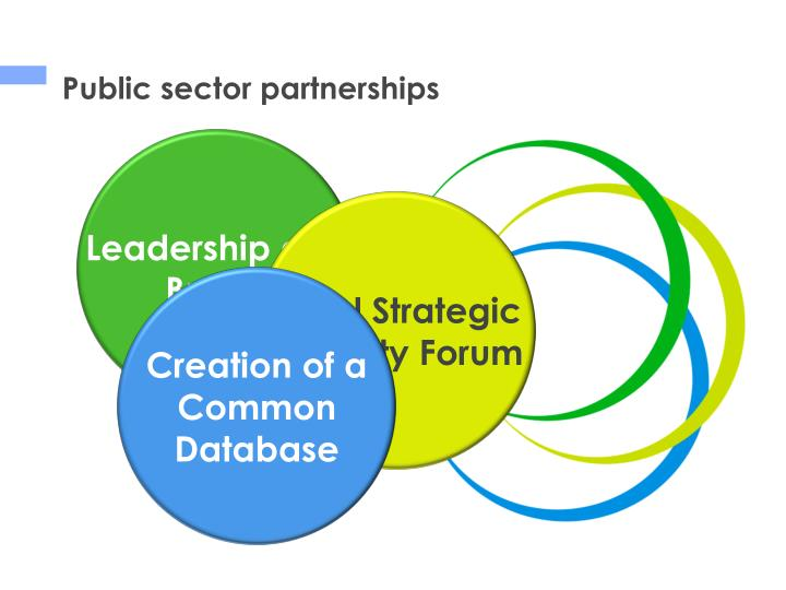 Public sector partnerships