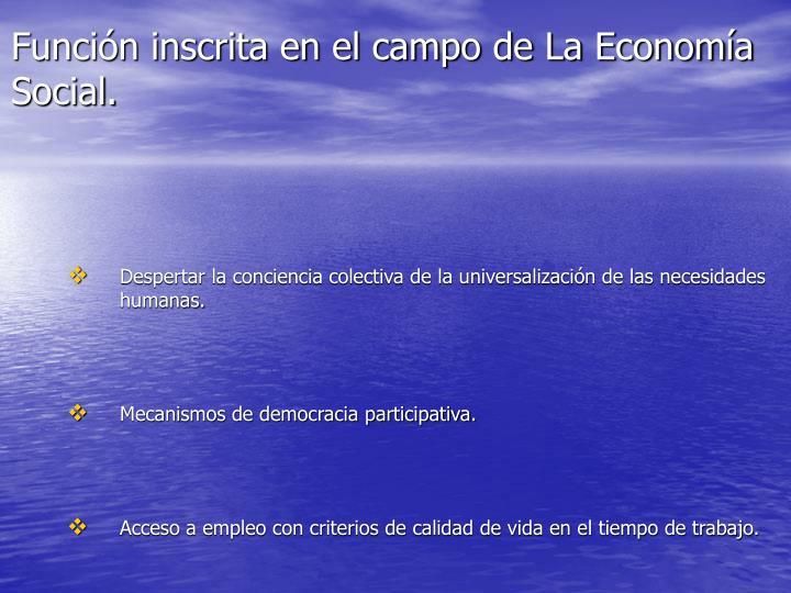 Función inscrita en el campo de La Economía Social.