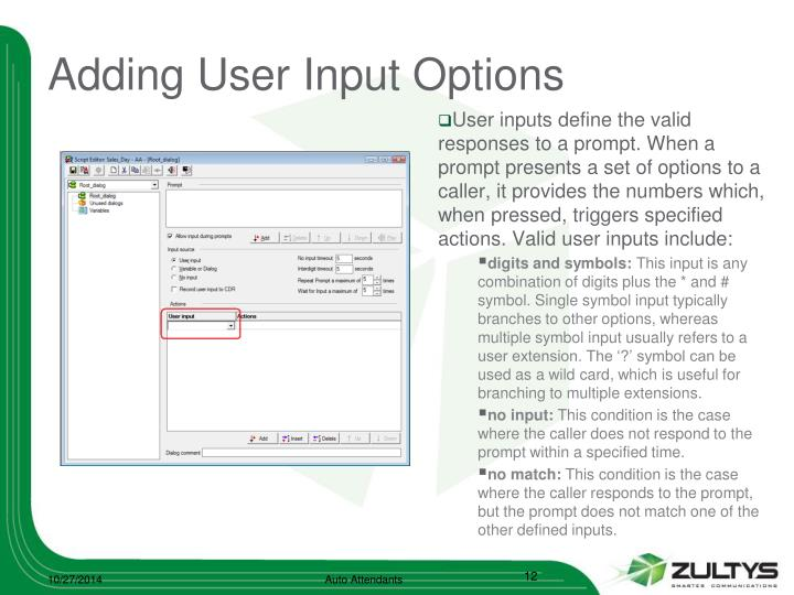 Adding User Input Options