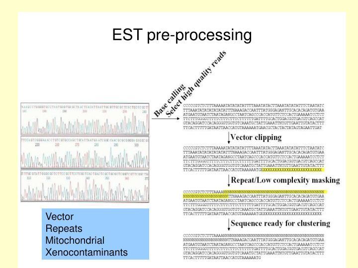 EST pre-processing