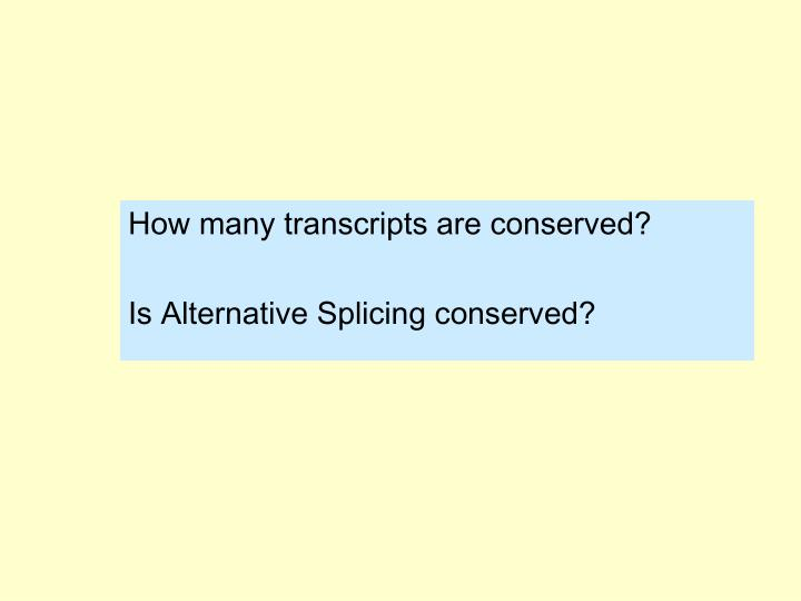How many transcripts are conserved?