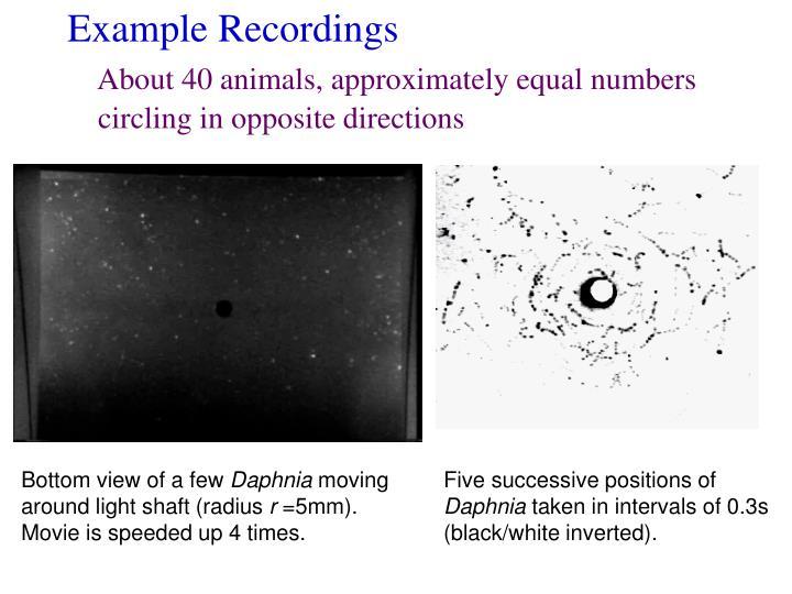 Example Recordings