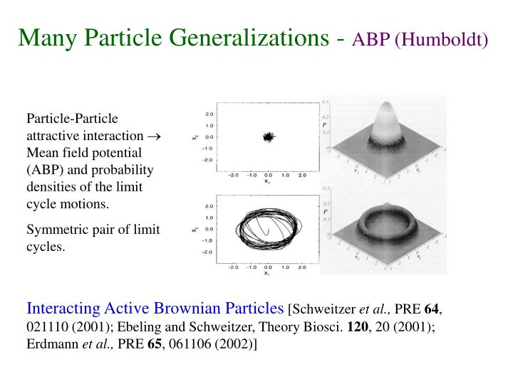 Many Particle Generalizations -
