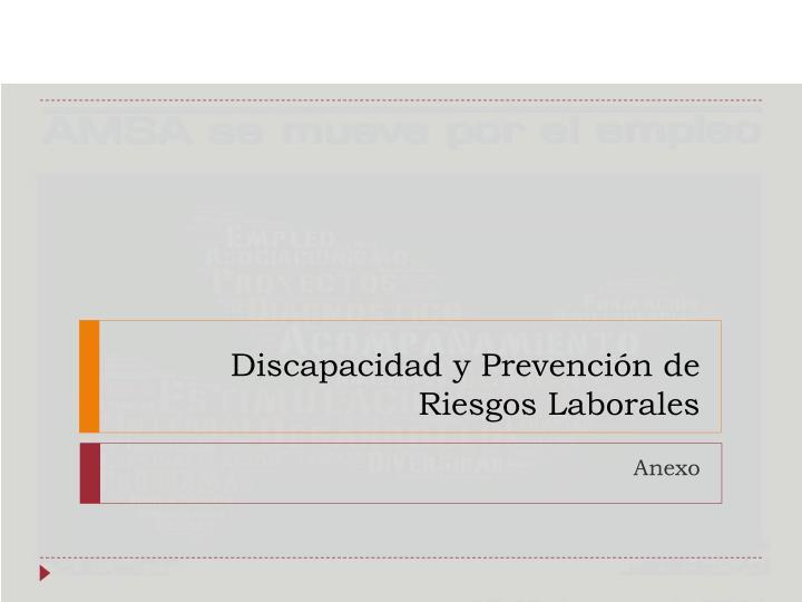 Discapacidad y Prevención de Riesgos Laborales