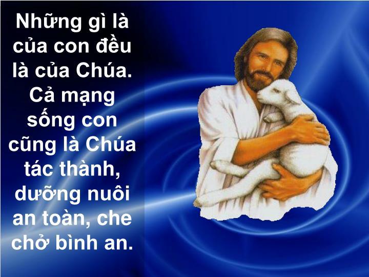 Những gì là của con đều là của Chúa.  Cả mạng sống con cũng là Chúa tác thành, dưỡng nuôi an toàn, che chở bình an.
