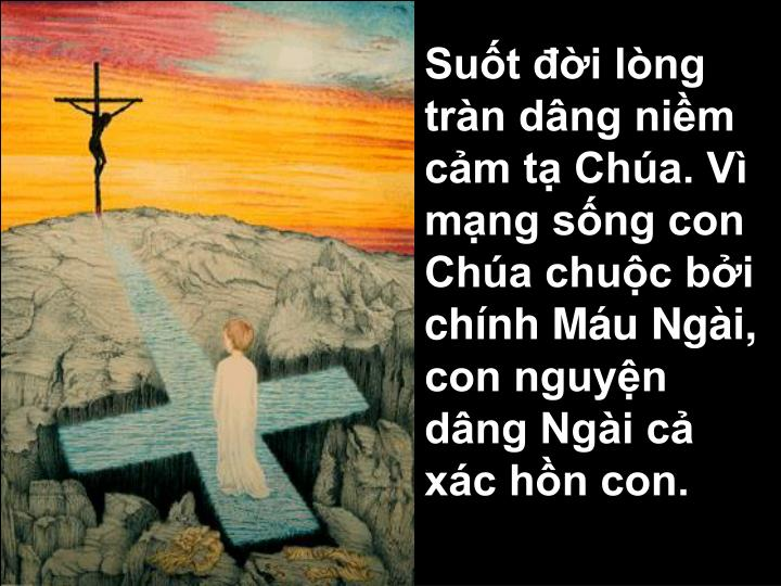 Suốt đời lòng tràn dâng niềm cảm tạ Chúa. Vì mạng sống con Chúa chuộc bởi chính Máu Ngài, con nguyện dâng Ngài cả xác hồn con.