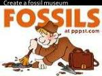 create a fossil museum