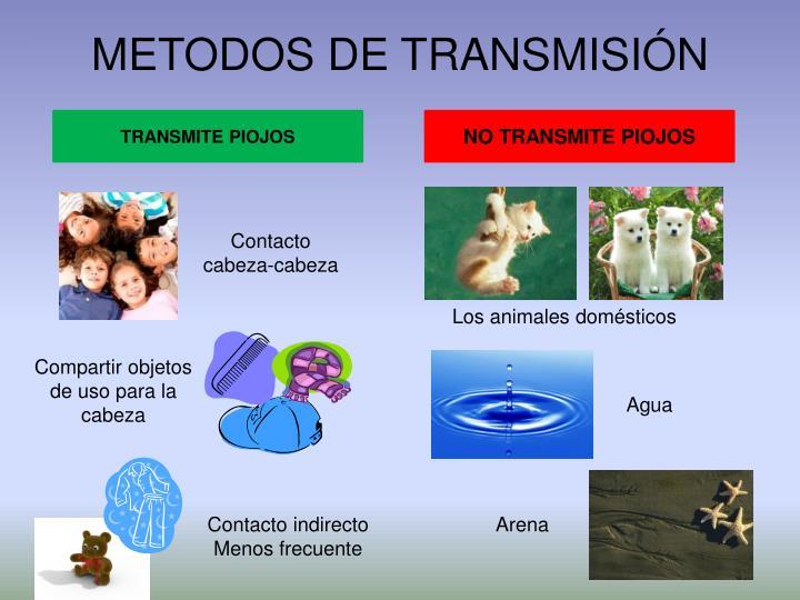 METODOS DE TRANSMISIÓN