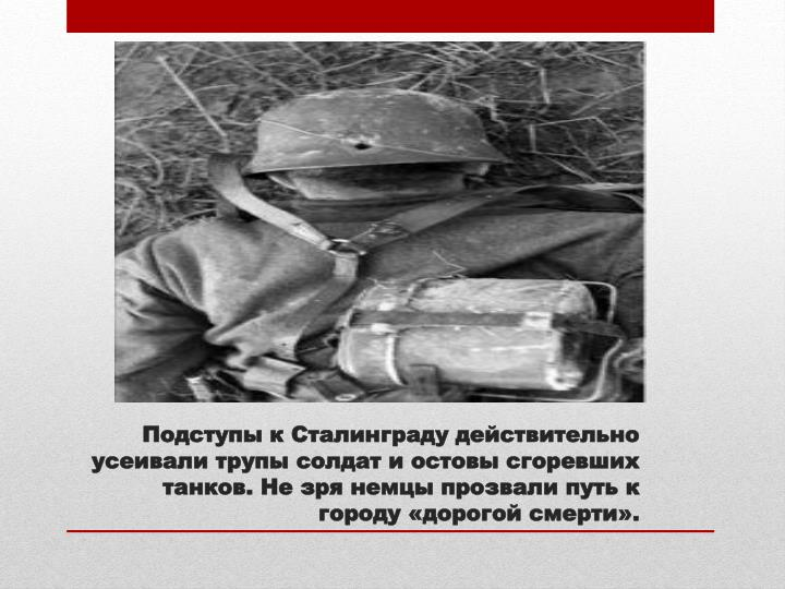 Подступы к Сталинграду действительно усеивали трупы солдат и остовы сгоревших танков. Не зря немцы прозвали путь к городу «дорогой смерти».