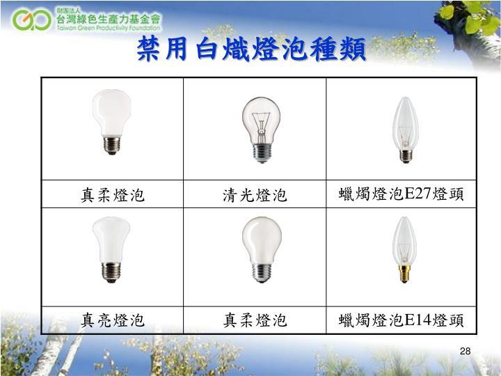 禁用白熾燈泡種類