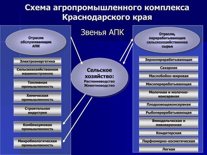 Схема агропромышленного комплекса Краснодарского края