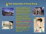 the university of hong kong