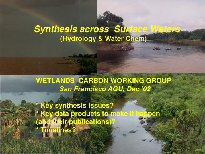 Synthesis across  Surface Waters