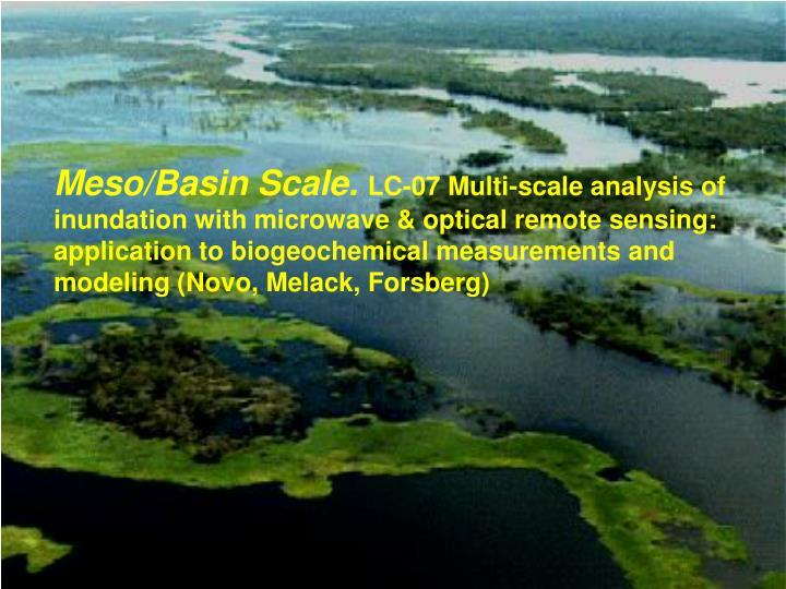 Meso/Basin Scale.