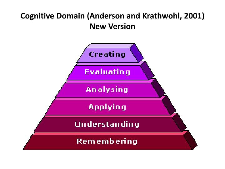 Cognitive Domain (Anderson and