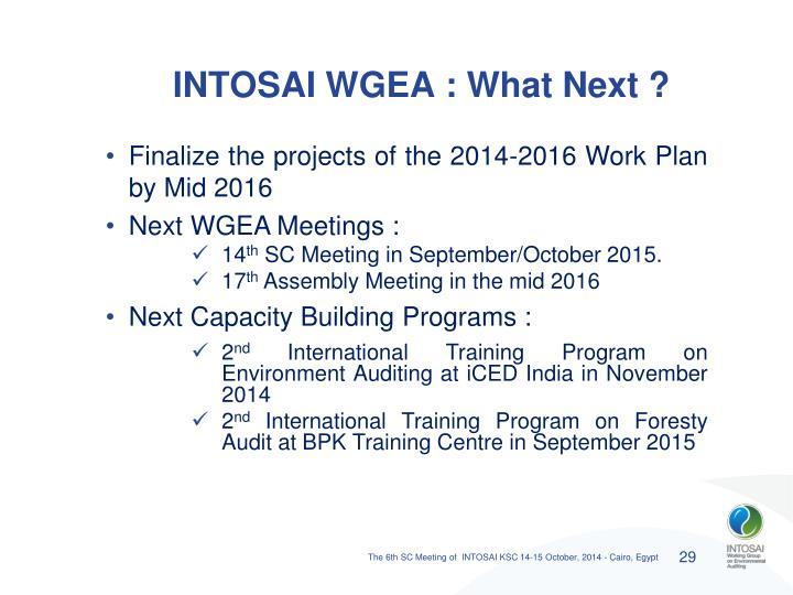 INTOSAI WGEA : What Next ?