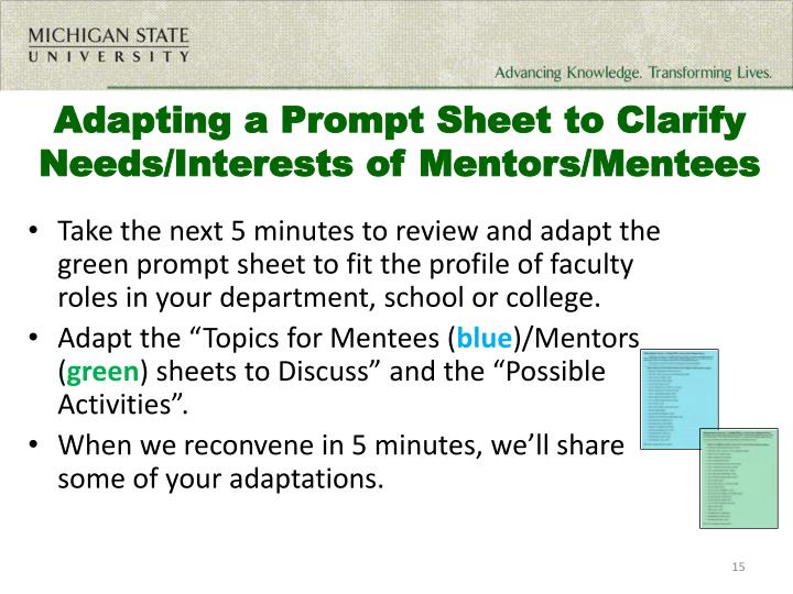 Adapting a Prompt Sheet to Clarify Needs/Interests of Mentors/Mentees