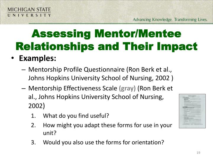 Assessing Mentor/Mentee Relationships and Their Impact