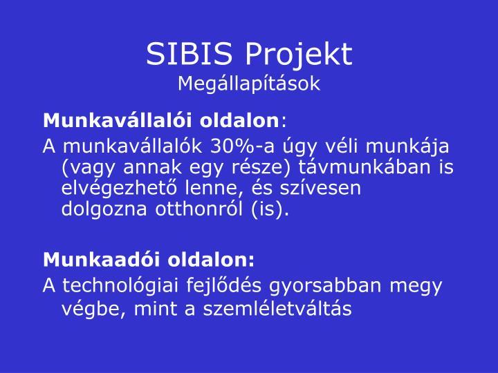SIBIS Projekt