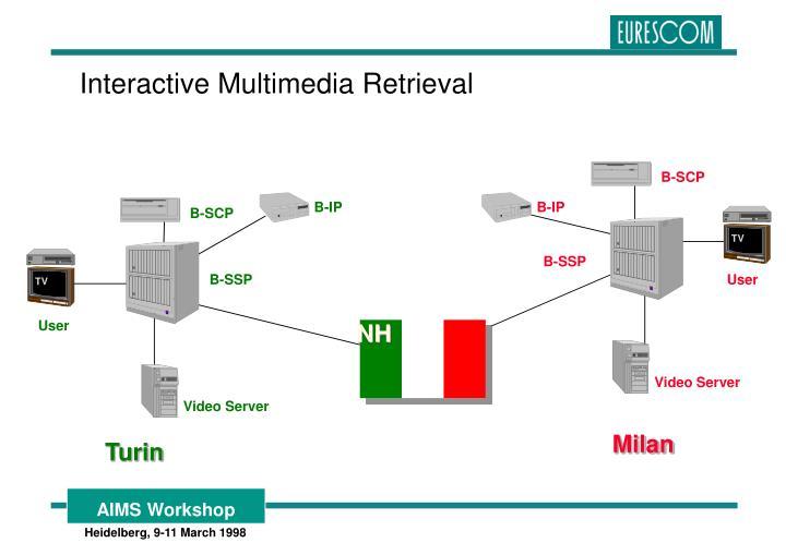 Interactive Multimedia Retrieval