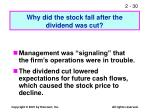 why did the stock fall after the dividend was cut