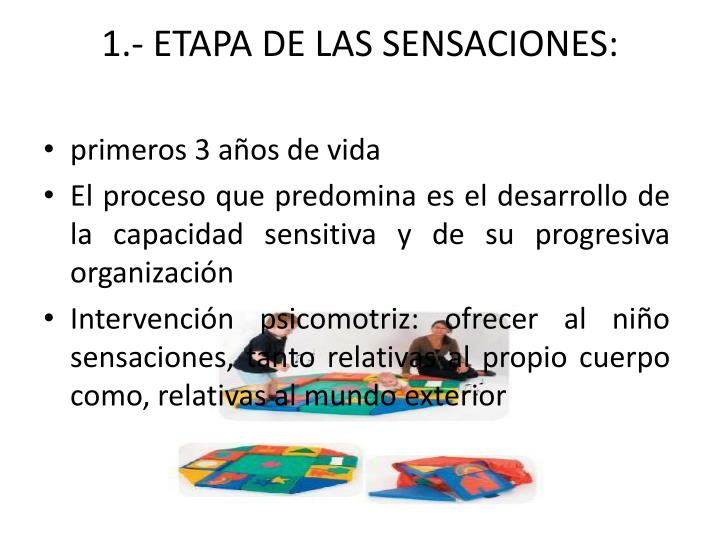 1.- ETAPA DE LAS SENSACIONES: