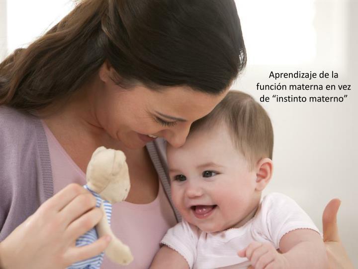 """Aprendizaje de la función materna en vez de """"instinto materno"""""""