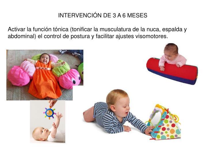 INTERVENCIÓN DE 3 A 6 MESES